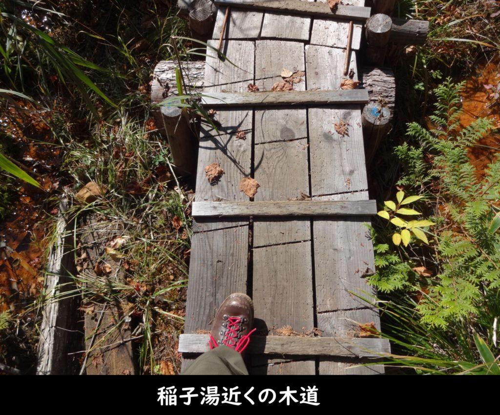 稲子湯近くの木道