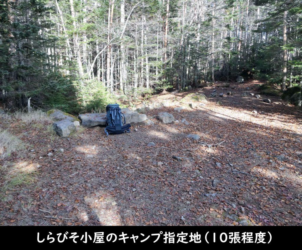 しらびそ小屋のキャンプ指定地(10張程度)