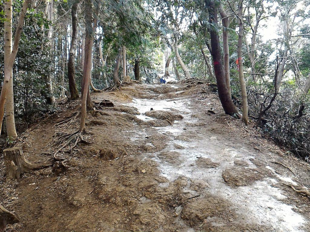 高尾山・稲荷山尾根の危険地帯