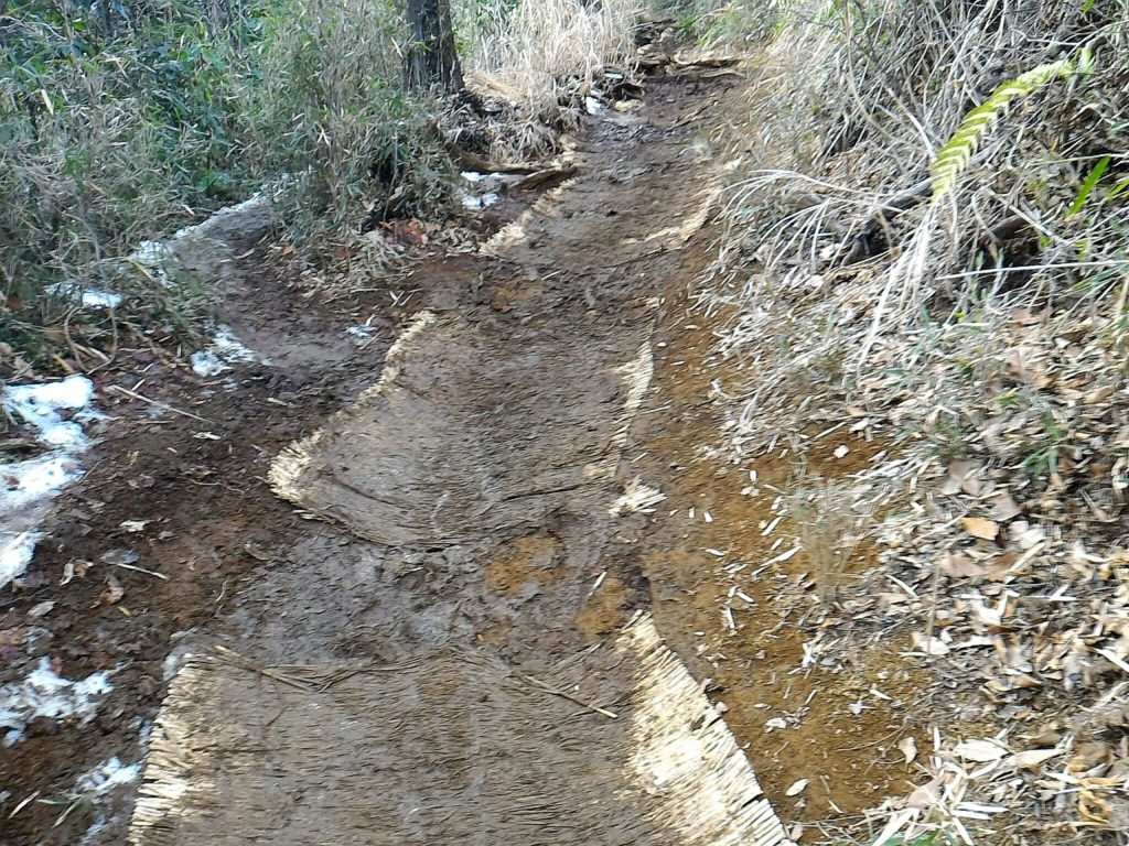 えぐれた登山道とムシロ